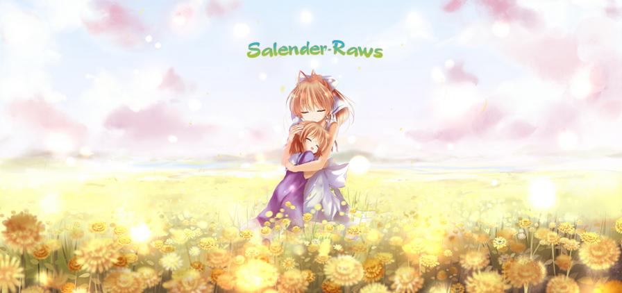 Salender-Raws
