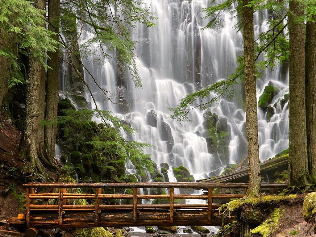 http://3.bp.blogspot.com/_EAViqbzwc_s/TJBlyQqH2TI/AAAAAAAAASg/7MRyAoHzcO0/s1600/nature-wallpaper-ramona-falls-mount-hood-wilderness-oregon.jpg