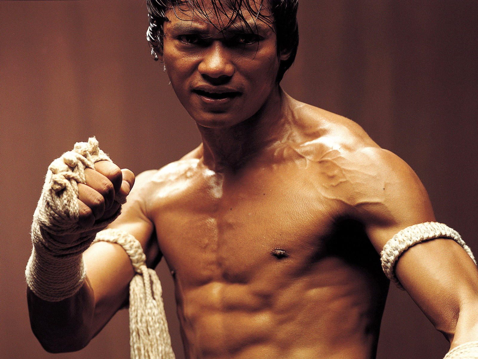 High Definition Photo And Wallpapers: download tony jaa ...