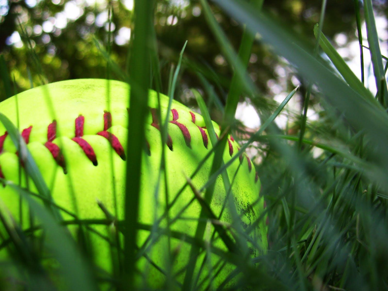 http://3.bp.blogspot.com/_EE-lHqijLPM/TA-g_aBISzI/AAAAAAAAAHM/g5w2-sr3J2E/s1600/softball.jpg