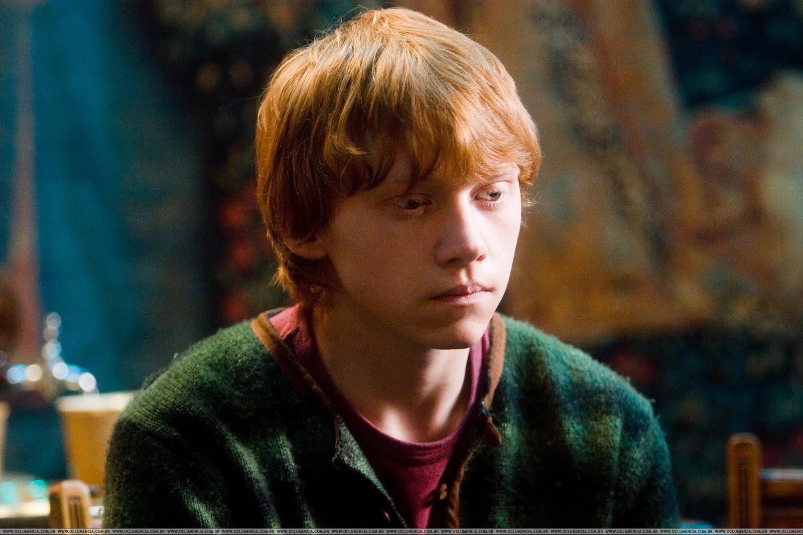 Ron Weasley Gif Cat