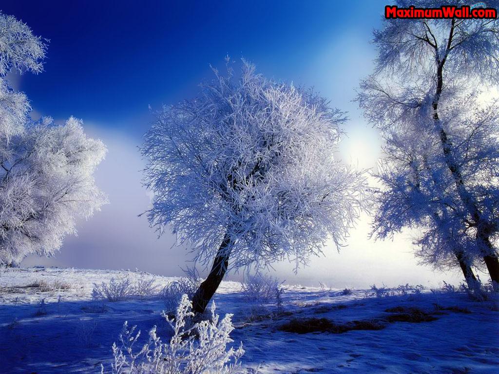 http://3.bp.blogspot.com/_EFOkLzJCJeA/TFVI2Dwn4lI/AAAAAAAAAUI/SXNSs4yTb00/s1600/photo-fond-ecran-wallpaper-nature-paysages-hiver-001.jpg