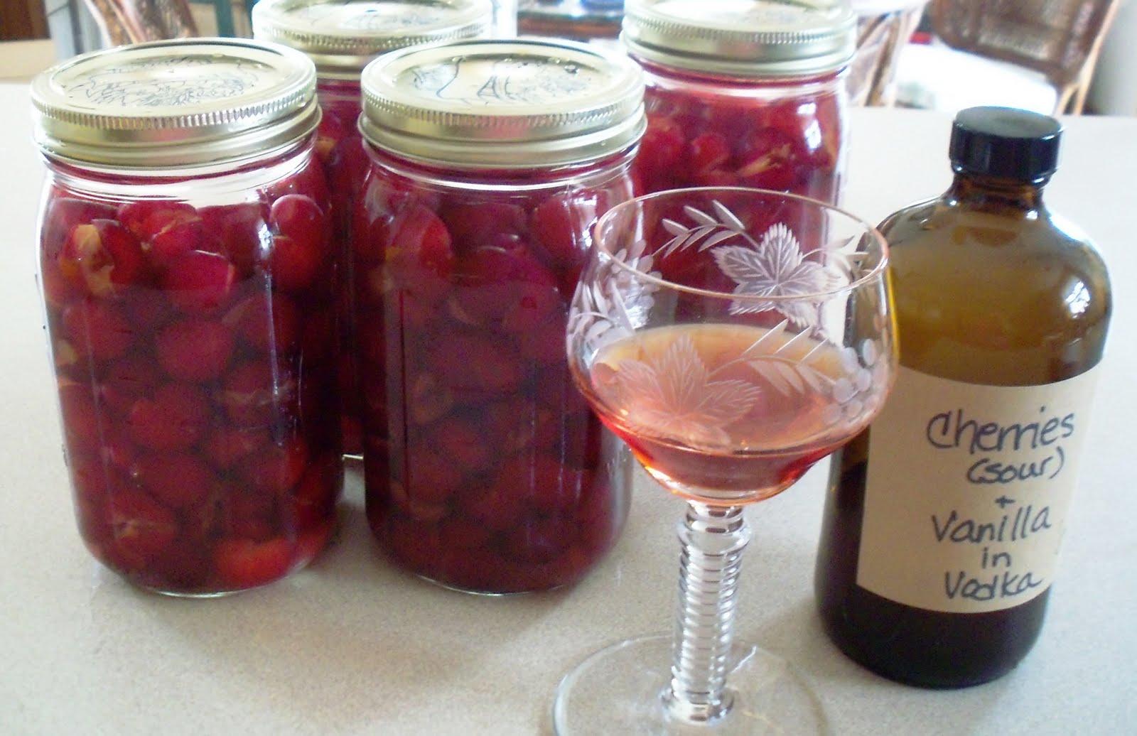 Рецепт настойки на спирту из вишни