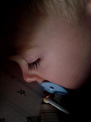 Wordless Wednesday…Sleeping Beauty