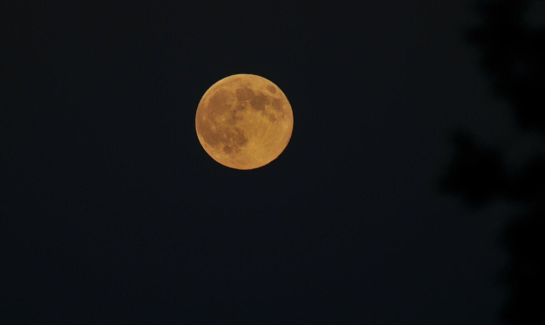 [Abierto] Paseo nocturno Luna+verano