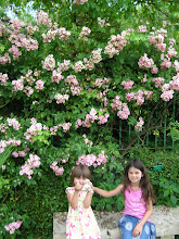 Summer, 2009