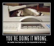 Gato por Fax