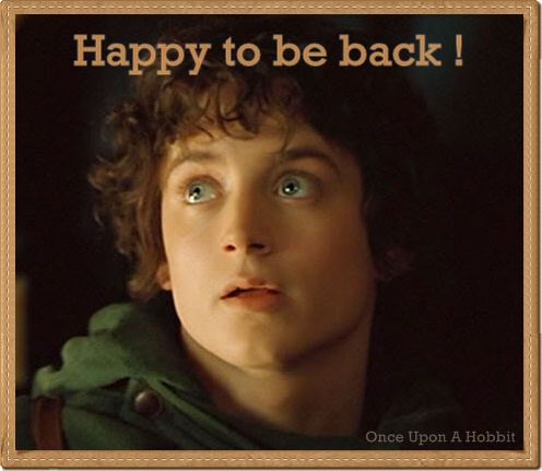 elijah wood frodo baggins. Elijah Wood is happy and