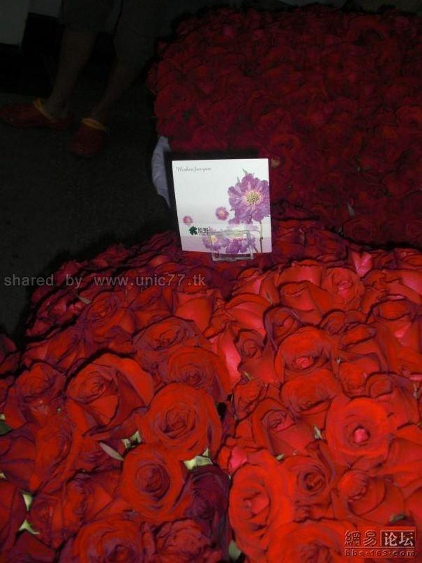 http://3.bp.blogspot.com/_EHi0bg7zYcQ/TJhV6lLSTrI/AAAAAAAAE6Y/CpfBDX95vhs/s1600/ocean_of_red_roses_08.jpg