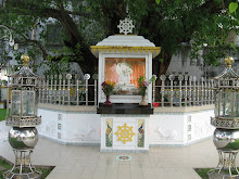 The Bodhi Tree today 2009