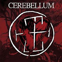 CEREBELLUM - Cerebellum