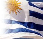 Bandera: la olvidada