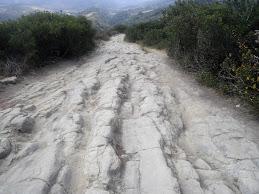 Rockit Trail