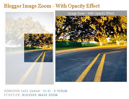 image-zoom-opacity-effect