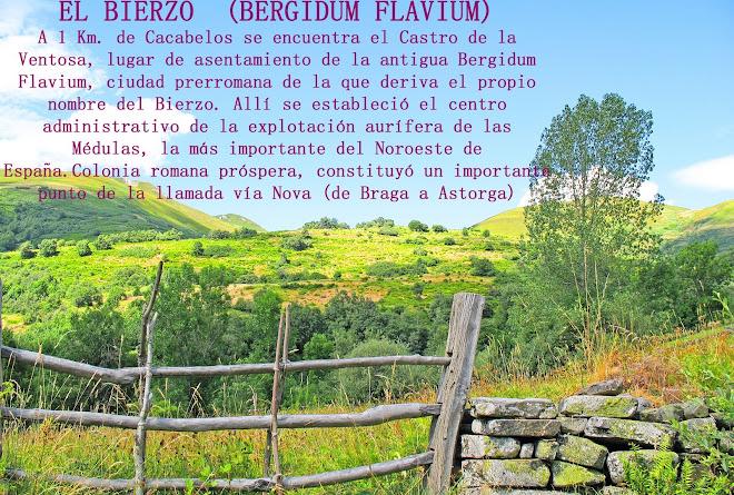 EL BIERZO  (BERGIDUM FLAVIUM)