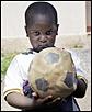 OMS alerta para risco de saúde para 34 milhões de crianças no mundo
