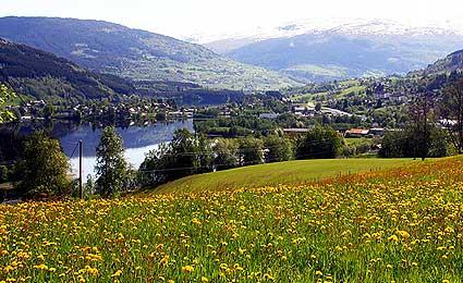 IDH, Noruega e a Olimpiada