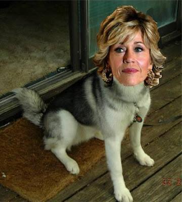 Jane Fonda's Dog