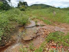 Água de chuva na caatinga VI