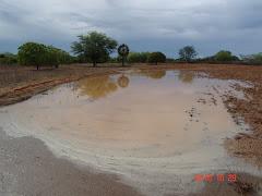 Água acumulada em barragem subterrânea após chuva na caatinga