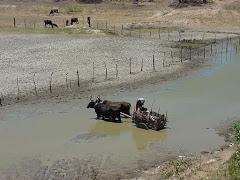 A falta de água no Sertão