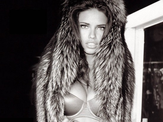 wallpapers adriana lima. adriana lima victoria secret.