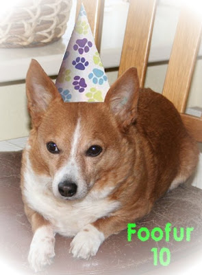 Foofur 10