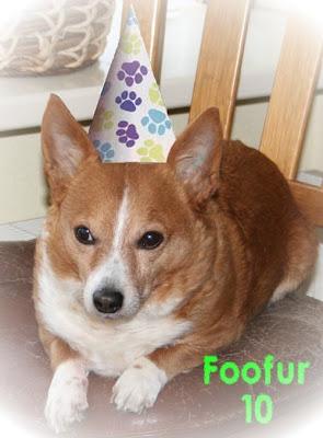 Foofur 10
