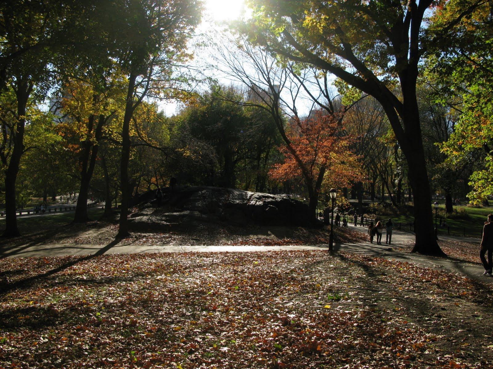 Lindo fim de tarde no central park