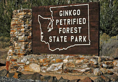 Ginkgo Petrified Forest Sate Park