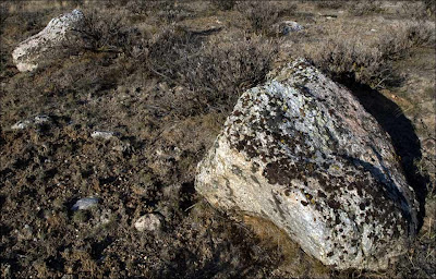 Ice Age Floods Lake Missoula erratics.