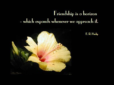 Quotes About Friendship Wallpapers. wallpaper friendship quotes