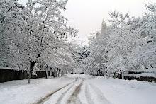 Nevadas y frio siberiano en España