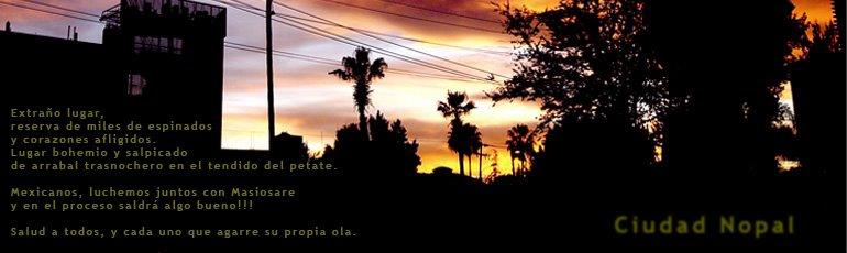 Ciudad Nopal