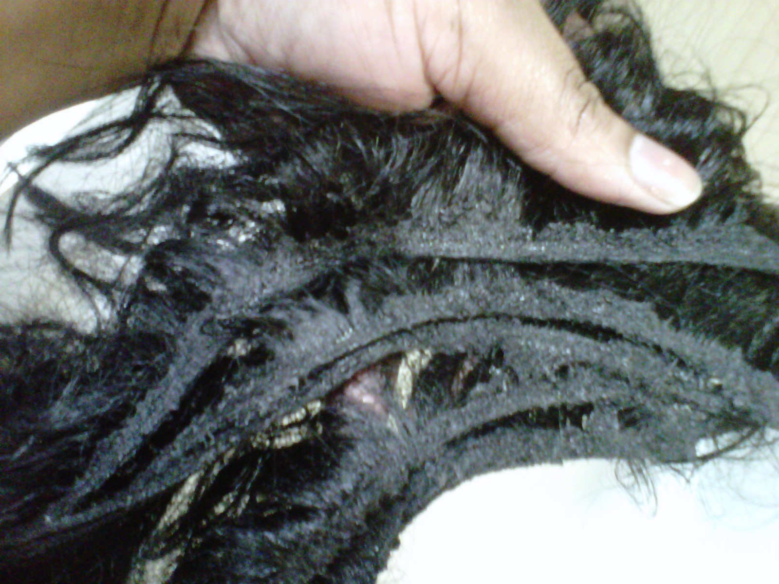 Phenomenalhaircare removal of gluefree quick weave partial head removal of gluefree quick weave partial head pmusecretfo Images