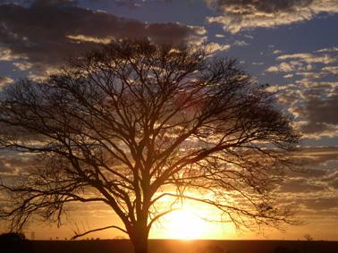 amanhecer1.jpg