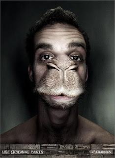 Homem+burro.jpg