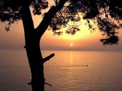 Alcuni splendidi tramonti!