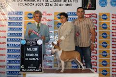 Mejor de Raza Quito (Ecuador)