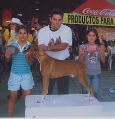 Junior gana grupo cachorro y adulto en la feria de bucaramanga sep-06