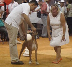 Alma Gana Raza Feria Bucaramanga Vepa-Cenfer