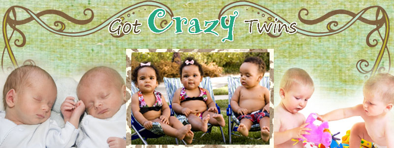 Got Crazy Twins