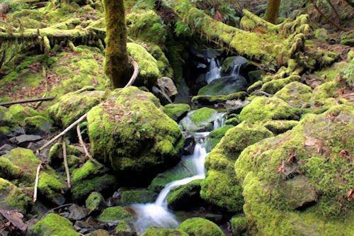 Cita con la naturaleza. (23 fotografías de paisajes)
