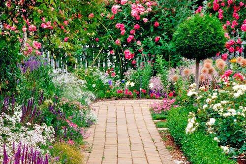 Jardines y flores (5 fotos para compartir en Facebook)