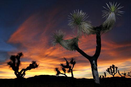 Del crepúsculo al amanecer II (10 imágenes gratis)