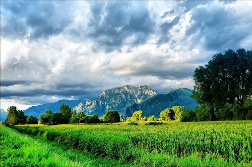 Paisajes naturales VII (Más allá de los verdes prados)
