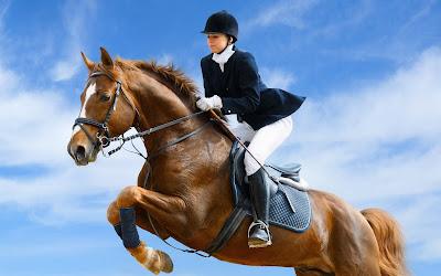 Fotografías de caballos I (hermosos equinos de pura sangre)