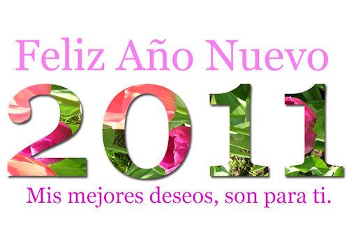 Mensajes para el Año Nuevo 2011 (3 versiones de lujo)