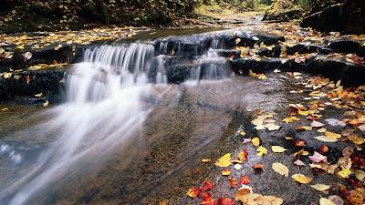 Paisajes Naturales - Natural Landscapes and Wallpapers