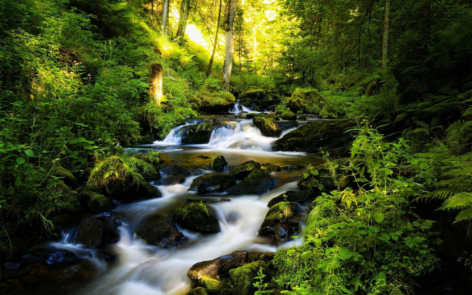 Lugares del mundo y sus paisajes mas bellos Facebook - Imagenes Bonitas De Paisajes Naturales